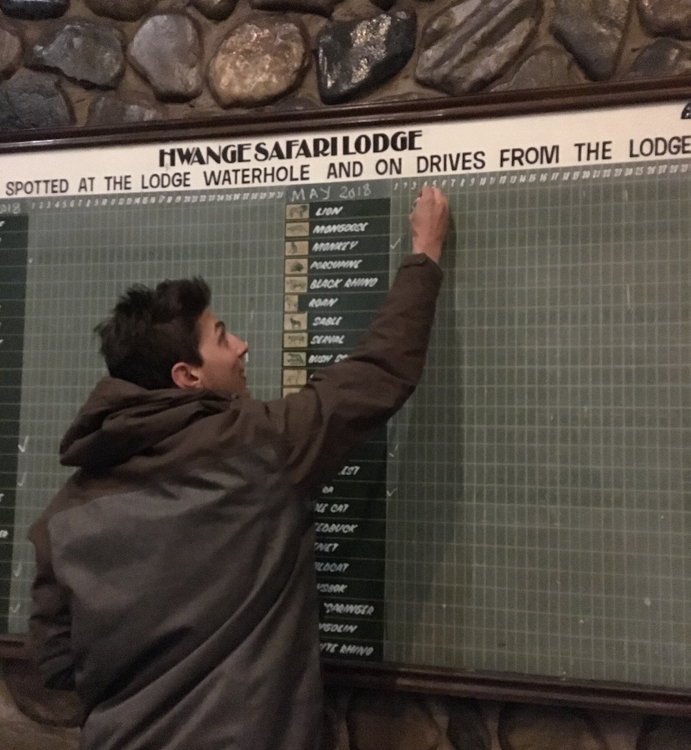 "Young man reaches up to the top of chalk board with a large grid to place a check mark next to ""lion"" on May 4th, 2018."