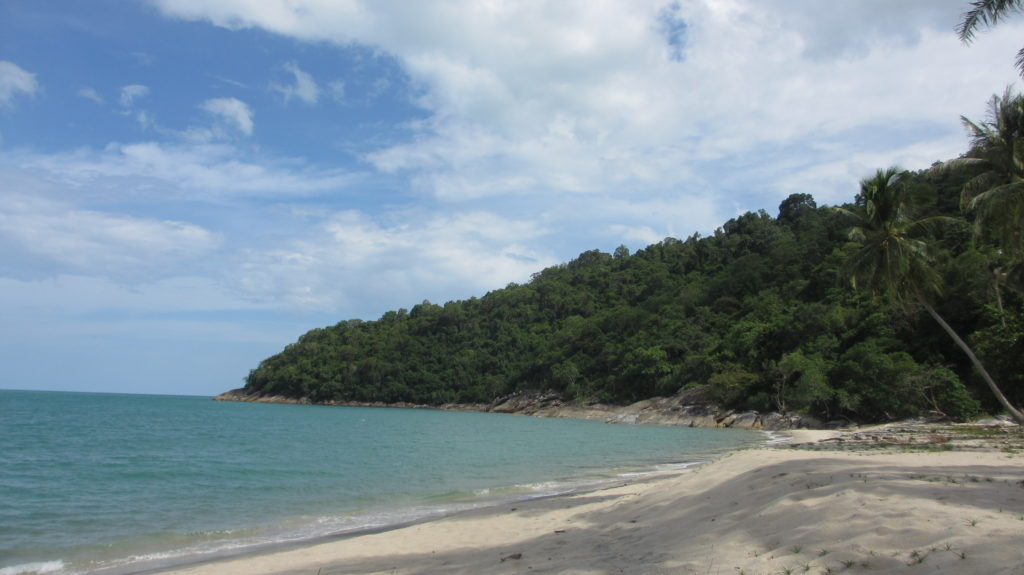 Secluded beach with wooded hill at the end.