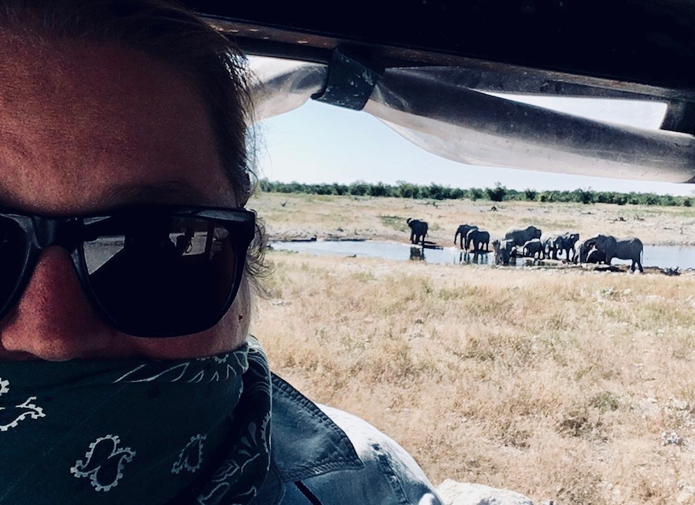 Selfie of blog author in sunglasses and banana over her mouth, taken from inside safari jeep, with herd of elephants in a watering hole in the background.