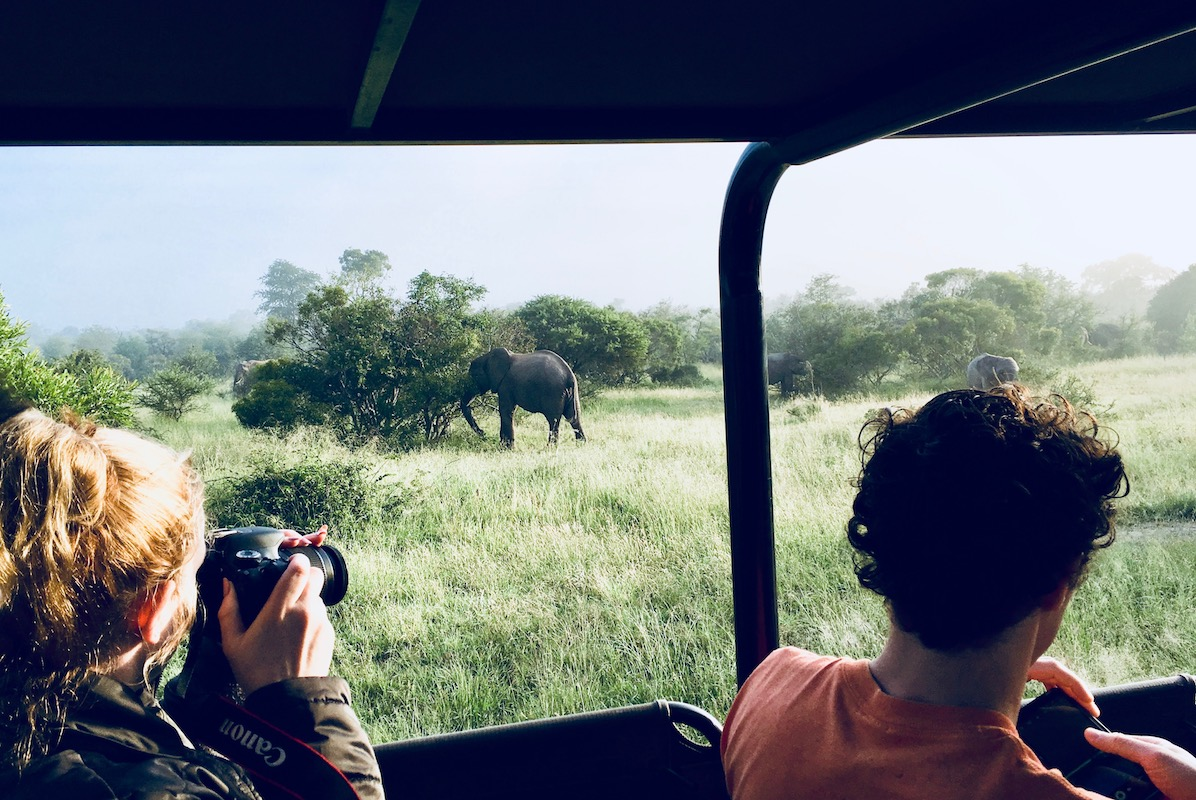 Elephant in Kruger National Park, taken from inside an open safari jeep, with a woman and man taking photos from the jeep in foreground.